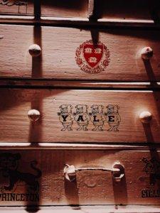 Harvard, Yale, and Princeton - Ivy League Schools